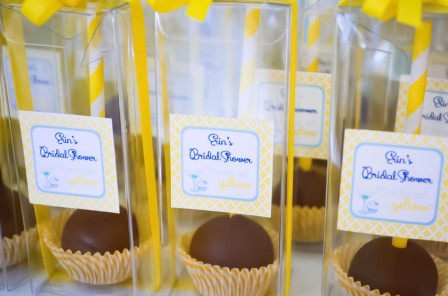 Cake Pops for Bridal Shower