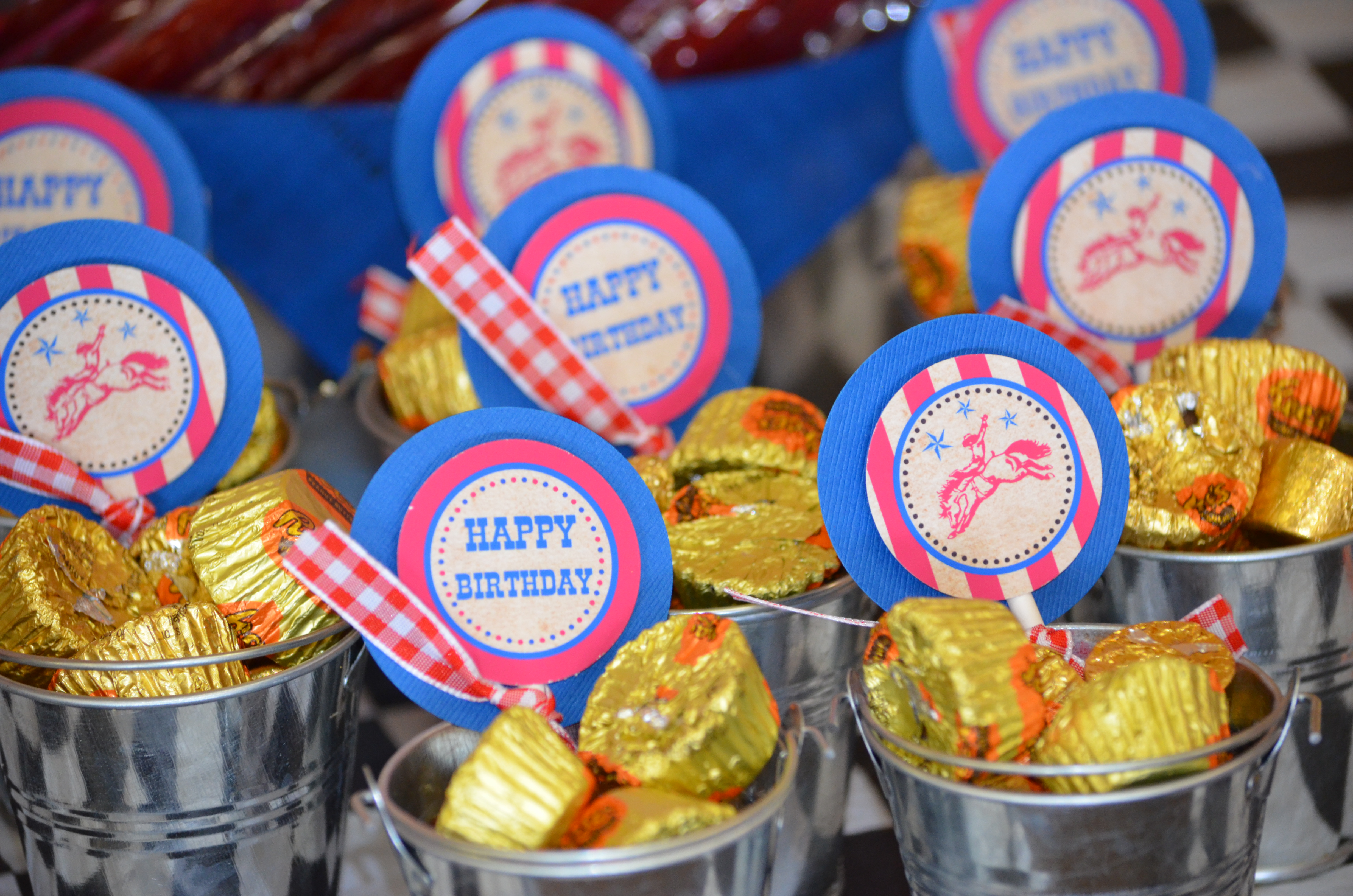 Alstede Farms Cowboy Rodeo Sweet Treat Candy Table Cw